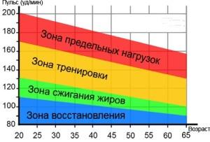 пульсовые зоны хх