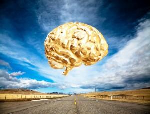 мозг над дорогой х
